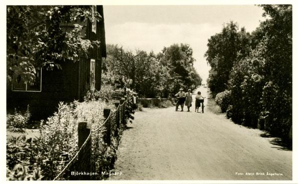 Björkhagsvägen, med Fridas hus till vänster, sedd från Skepparens väg (på 50-talet)