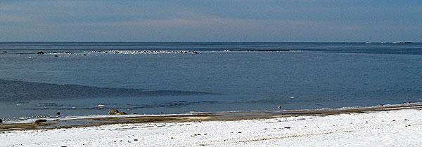 Grytehamn, Grytan eller Gryts läge i januari 2010 Stora Hult
