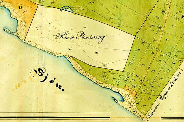 Magnarps skog vid laga skiftet 1839 Krono Plantering Kronoskog