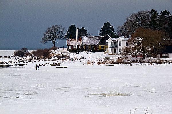 Vinter i Skepparkroken 2010-02-01