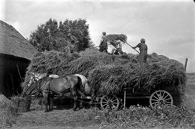 Bondelivet i Magnarp på 1920-talet (foto Robert Romberg)