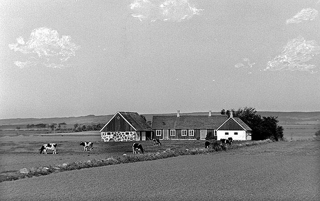 Gården Magnarp 5:9 på ett foto av Robert Romberg