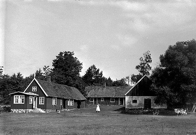 Villa Mathilda och Brynolfs hus i Björkhagen på 1920-talet (foto Robert Romberg)