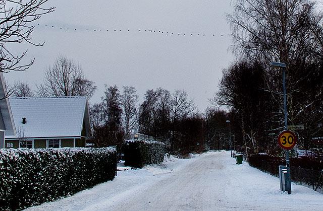 Kustroddarevägen vid Linbråkarvägen i december 2010