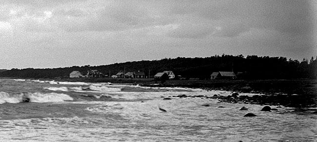 Stranden nedanför Magnarps skog i mitten på 1920-talet (foto Robert Romberg)