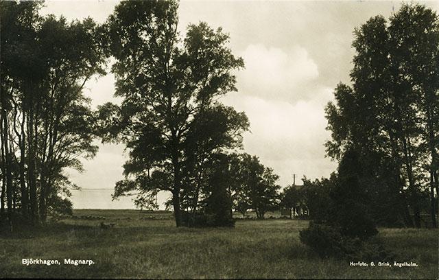 Björkhagen på ett vykort från c:a 1930