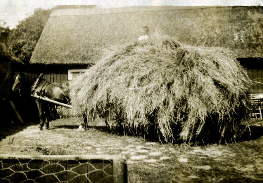 Sture Hellberg i gammelgården (nuv. Nordfeldts) i Skepparkroken på 1920-talet
