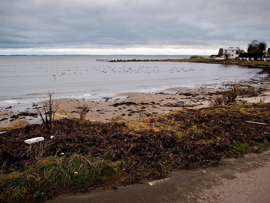 Resultat av stormen 1.a advent 2011 i Skepparkroken