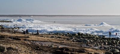 Isberg vid stranden i Skepparkroken 2012-02-23