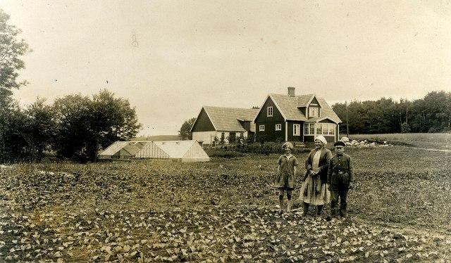 Åvalla trädgårdsmästeri i Luntertun i början på 1930-talet