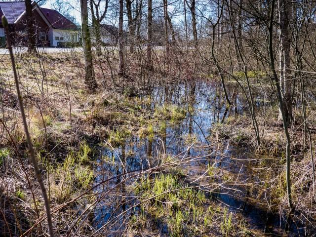 Vångafloden - damm vid Kustroddarevägen i mars 2016