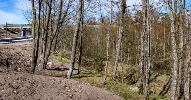 Den äldsta grusgropen vid Barkåkra station